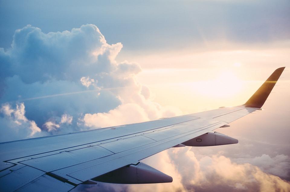 Работники «Аэрофлота» судивлением отыскали свои подписи под петицией ШПЛС