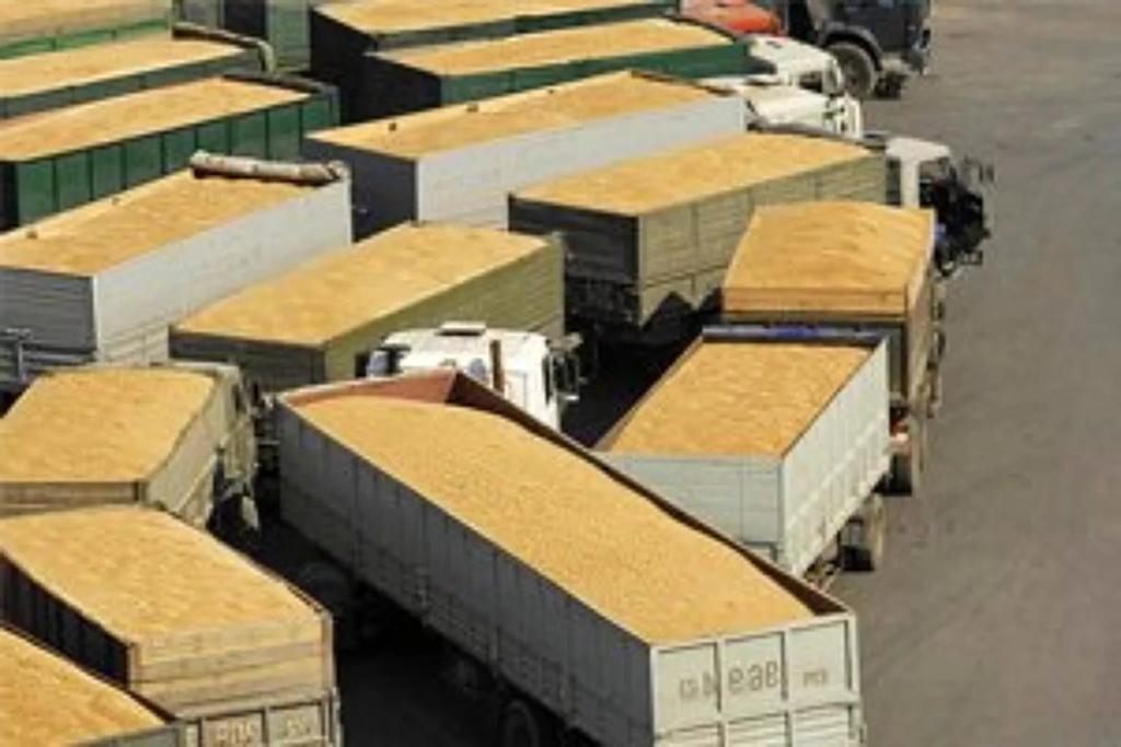 Промсвязьбанк выступил гарантом участия русской компании втендере Египта назакупку зерна