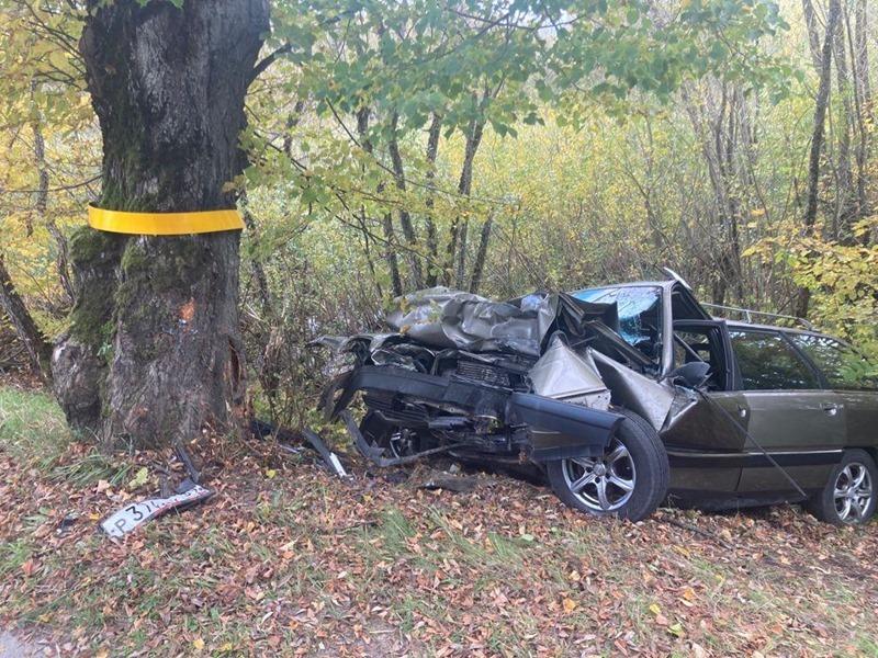 Водитель погиб после столкновения на большой скорости с придорожным деревом
